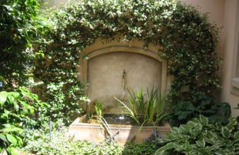 <p>Lovely pond surrounded by Star Jasmine</p>
