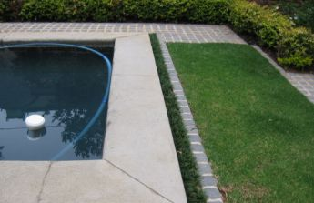 <p>The pool was a bit high so using Mondo grass around the edges hid the raised concrete.</p>