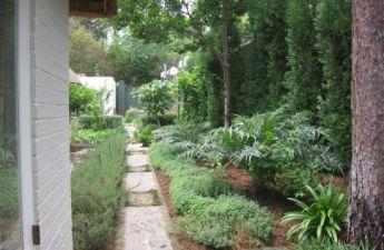 <p>Vegetable garden hidden behind the house</p>