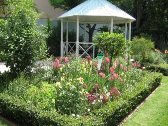 <p>A small Zen garden</p>