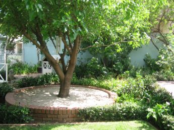 <p>Create a circle around a tree with river sand or crushed stone</p>