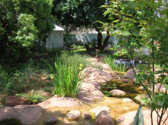 <p>Natural pond</p>