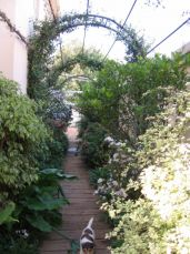 <p>Arch over walkway next to the house</p>