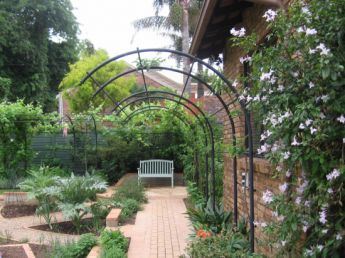 <p>Curved arches for Apples</p>