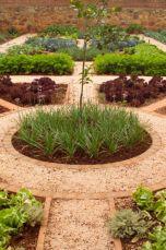 <p>Vegetable garden</p>